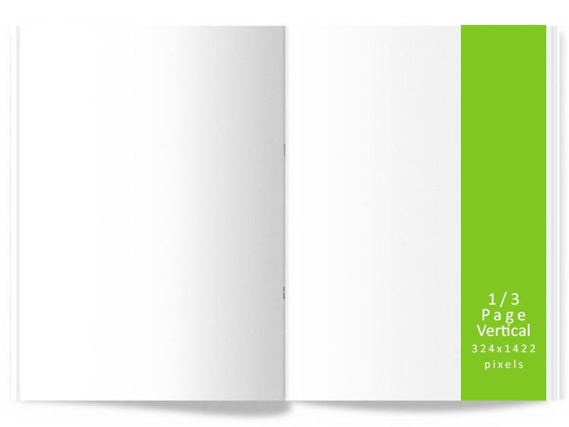 Digital Ad - 1/3 Page