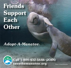 Adopt-A-Manatee